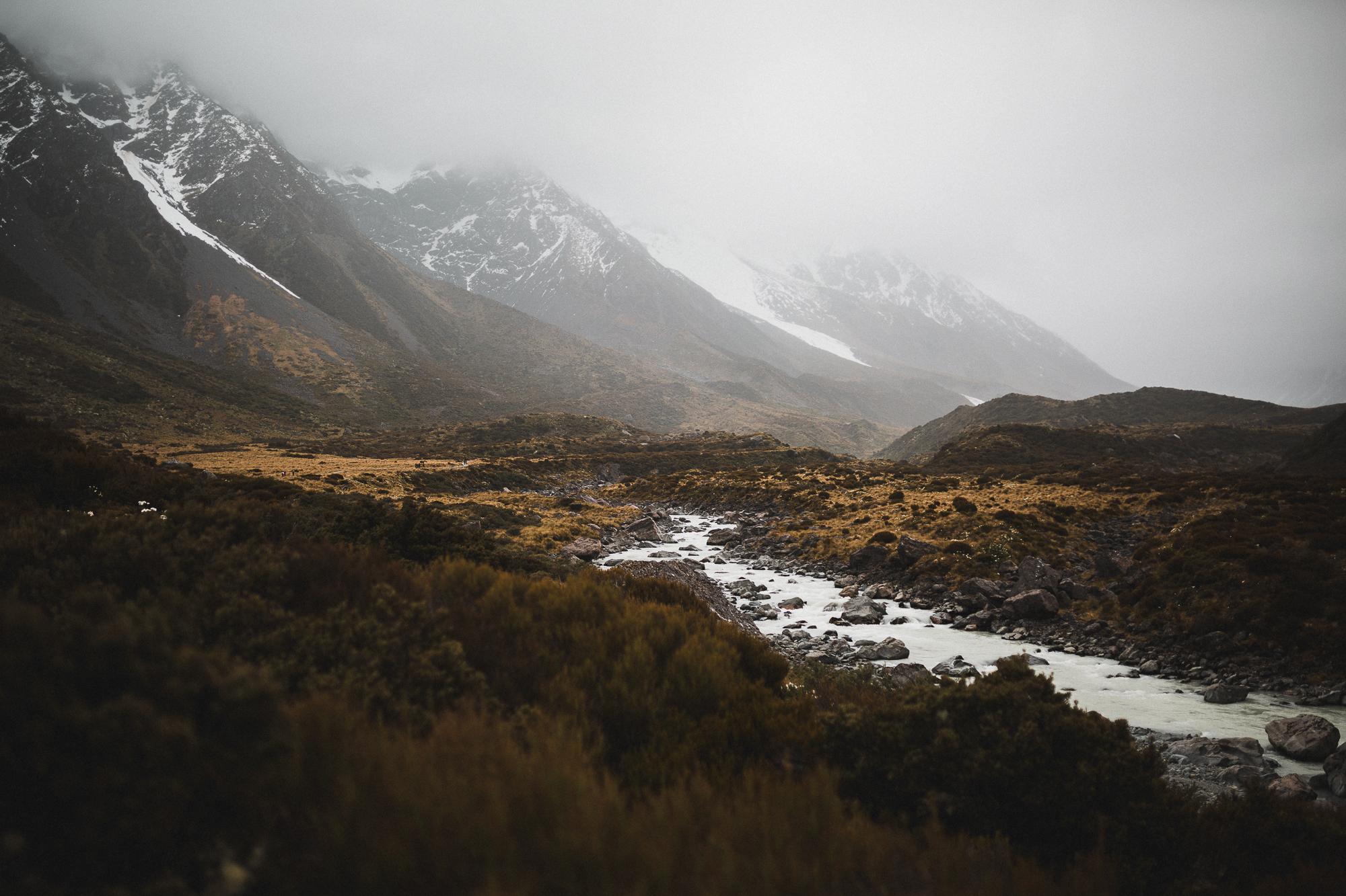 NZ_2017__DM30277